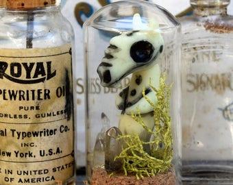 Mountain Ghost - Bottled Specimen