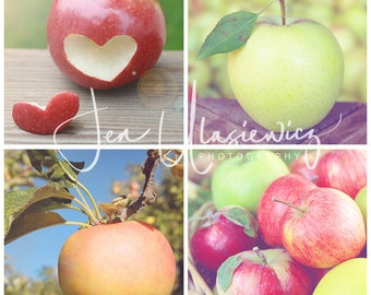 Set of 4 Apple 8x8 Fine Art Photography Prints, fruit, kitchen, still life