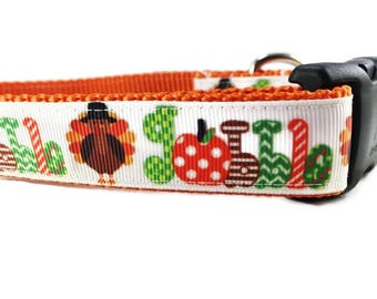 Thanksgiving Dog Collar and Leash, Gobble, 6ft long, 1 inch wide, adjustable, plastic buckle, metal buckle, chain, martingale, hybrid