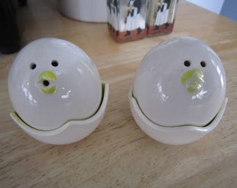 Hatching Chick's in Shell Salt and Pepper Shakers