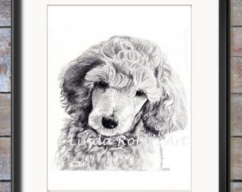 Pet Portrait PRINT, Animal Art, Standard Poodle