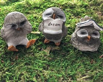 Little Owls, Owl Figurines, With Book, With Dream Sign, 3 Piece Set, Home & Garden Decor, Fairy Garden Accessory, Topper, Shelf Sitter, Gift