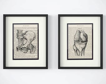 Physical Therapy - Set of 2 Prints - Hip, Knee over Vintage Medical Book Pages - Orthopedic Nurse, Orthopedic Gift, Physical Therapist Gift