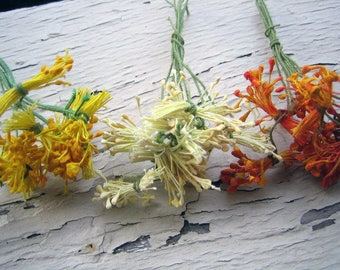 30 pieces of Gorgeous Antique Flower Pips, Stamens,  3 Colors, 10 pieces of each color, approx 4 inches long (Ref A-2549, A-2556 Box 2)