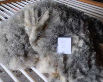 CVM Romeldale Raw Fleece