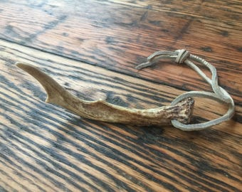 Deer Antler - Naturally Shed