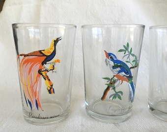 4 painted Bird Glasses juice glasses Parrot  Bird of Paradise  Lrogon Temnurs  Woodpecker bright and cheerful, nicely painted