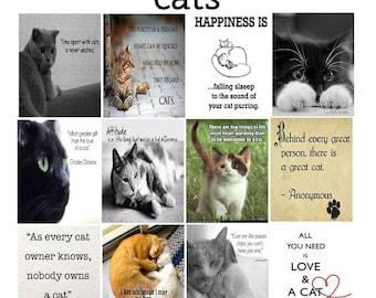 Pet, Cat Quotes, Planner Stickers, Animals, Dog, Cat, Love, Family, Full Box, Vertical, ECLP, Plum Paper Planner