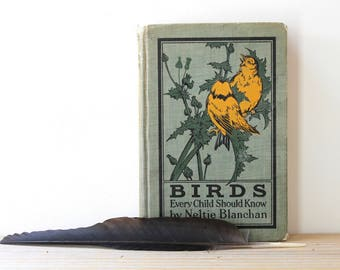 Rustic vintage bird book / nature collectible / naturalist gift idea / nature inspired office decor / ornitology / 1907 rustic birding book