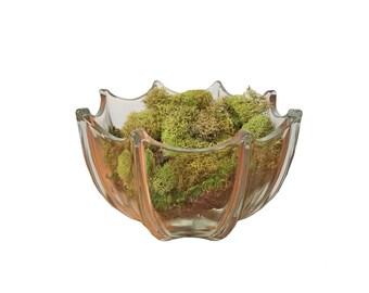 Mid Century Scalloped Glass Bowl