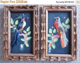 ON SALE Vintage Framed Bird Pictures, Bird Feathers, Small Pictures, Wood Frames, Set Of 2, Tropical Birds, Wallhanging, Home Decor, Wall Ac