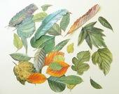 Leaves Die cut style, Botanical - Vintage Scrapbooking Paper Craft Pack,  Leaf Embellishments, Cut outs