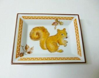 "tidy ""squirrel"""