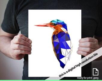 printable art Print, Art Poster, Wall Art, Artwork, Geometric print, Wall Art , King Fisher, Bird art - Orange,Blue, exotic
