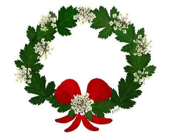 Christmas Wreath -  Pressed Flower Cards - Set of 6 Blank Notecards - #97
