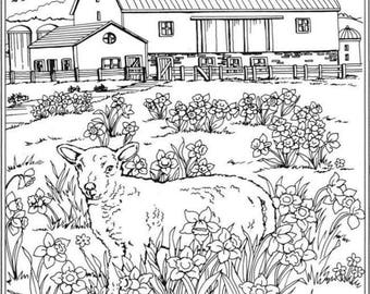 Adult Coloring Page Printable Country Side Barn and Sheep Digital Download