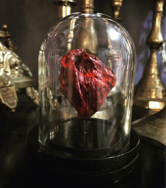 Mummified Rabbit Heart in Glass Dome