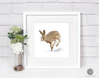 Running Hare Framed Print Artwork Picture