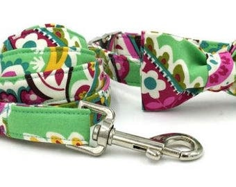 Paisley Cotton Dog Collar with Leash/Bow Option