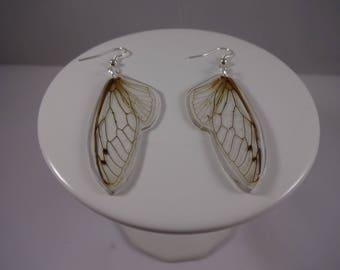 Seventeen Year Cicada Wing Earrings