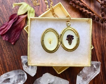 tiny flower locket // floral brass necklace // real pressed plants // botanic pendant // yellow and purple flowers