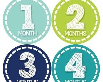 Monthly Baby Milestone Stickers Baby Boy Baby Shower Gift One-Piece Baby Stickers Monthly Baby Stickers Baby Month Sticker 367