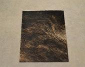 "Dark Brindle Leather Hair on Cow Hide 8"" x 10"" Pre-cut-1 CA-67453 (Sec. 1,Shelf 5,C)"