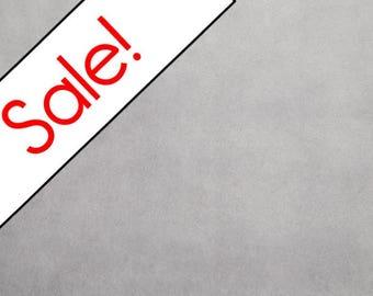 SALE  Platinum Minky Fabric, Shannon Fabrics, per Yard