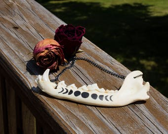 Moon Phase Coyote Jawbone Necklace