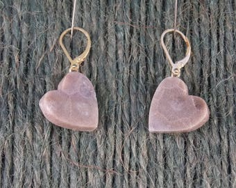 EP#230 Earrings- Petoskey Stone Hearts, Yellow Gold Plated Lever Back Hooks.