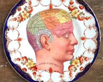 Vintage Phrenology Head Decorative Altered Art Hanging Plate