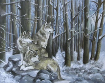 Sentinels - Wolf Wolves Limited Edition Mounted large print direct from studio with signed COA