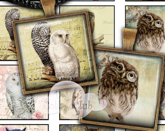 """Owls 1"""" x 1"""" Digital Collage Sheet 1 Inch Square Tile Images for Jewelry Making, Pendants, Scrapbooking, Decoupage, Cardmaking"""
