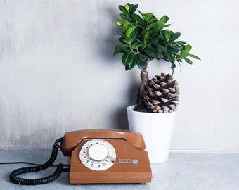 This is beautiful brown color phone. Lovely design! Made in Soviet Union. Good analog phone in good condition.