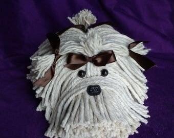 Mop Dog - Havanese - Shih Tzu - Maltese - Lhasa Apso - Schnauzer - Bichon- Coton De Tulear - Tibetan Terrier -  Puppy Dog - Pet - Schnauzer
