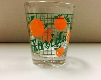 Kitschy Florida Souvenir Shot Glass
