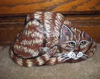 Tabby Cat Rock