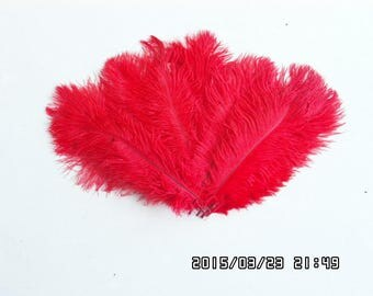 50pcs red  and  50pcs  purple  Ostrich Feather Plume for Joyce Bacon