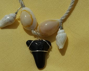 Handmade Real Shark Tooth Natural Hemp Necklace