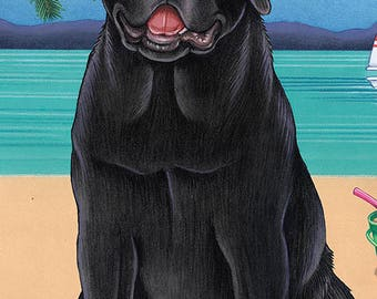 Labrador Retriever Beach Towels.