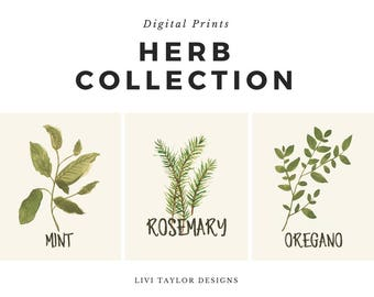 Herb Digital Print Watercolor Collection