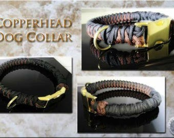 Copperhead Dog Collar