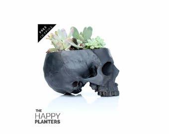 Skull Planter Black, Human Skull Vase, Office Planter, Desk Planter, Air plant Terrarium, Cactus Planter, Succulent Vase, Human Skull Bowl