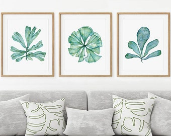 Watercolor Print Set Of 3 Sea Fan Art Prints, Teal Blue Coastal Wall Decor  For