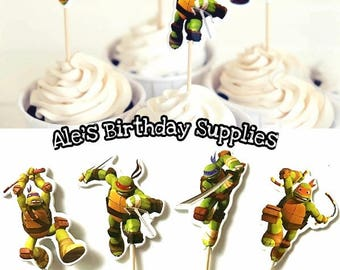 24 Pc Teenage Mutant Ninja Turtles TMNT Cupcake Cupcake Toppers Double Sided Birthday Party Supplies