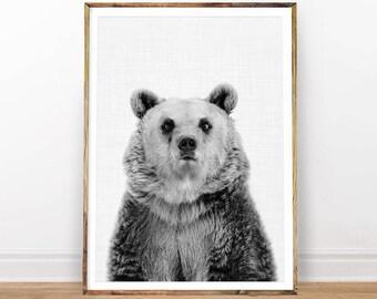 Nursery Animal Print, Bear Print, Baby Animal Print, Boy Gift, Woodland Animal Print, Animal Nursery, Digital Print, Instant Download