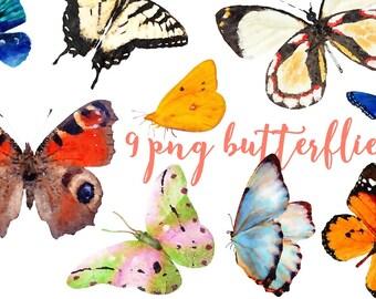 watercolor clipart Butterflies Watercolor floral clipart tropical 9 png  Aquarelle Machaon Digital Clip Art watercolour colorful clip art