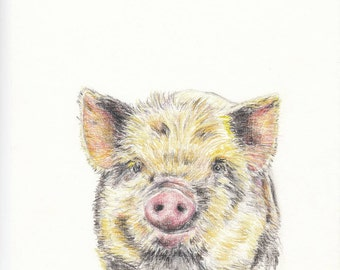 Baby animal print for nursery - Pig (digital download)