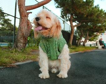 Cesar Scottish Sweater