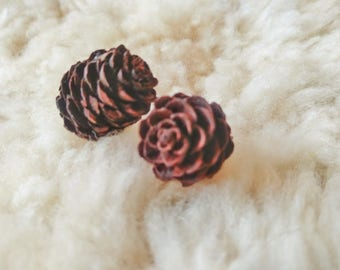 Miniature Pine Cones for Crafting l Fairy Garden Supplies